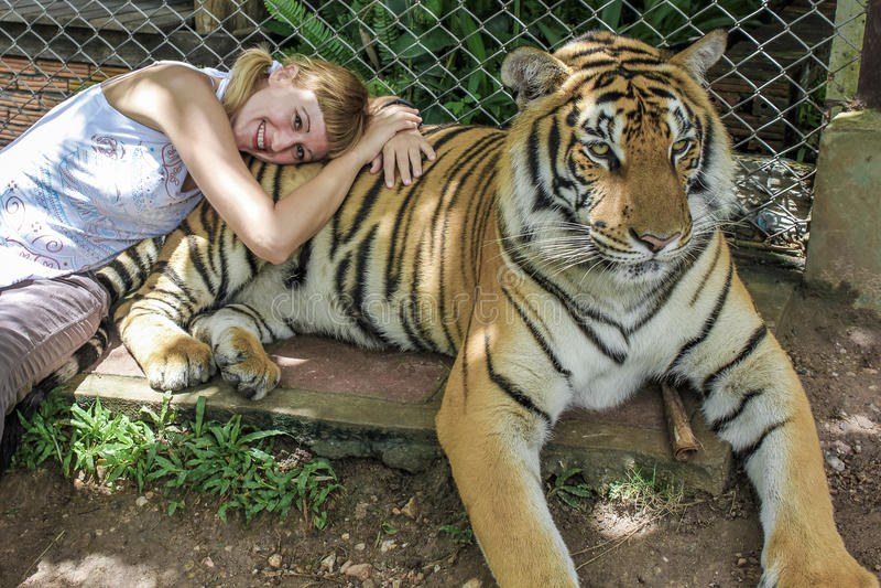 Den blonda flickan med råttsvansar ligger ner på en thailändsk modig tiger royaltyfri fotografi