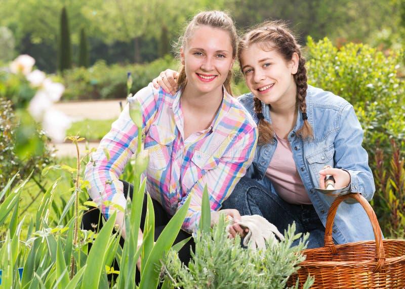 Den blonda kvinnan och flickan som arbetar i grön vår, arbeta i trädgården royaltyfria bilder