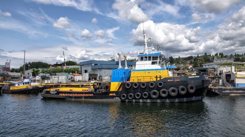 Den bogsera skytteln för BERING JÄTTE på sjön Washington Ship Canal royaltyfria foton