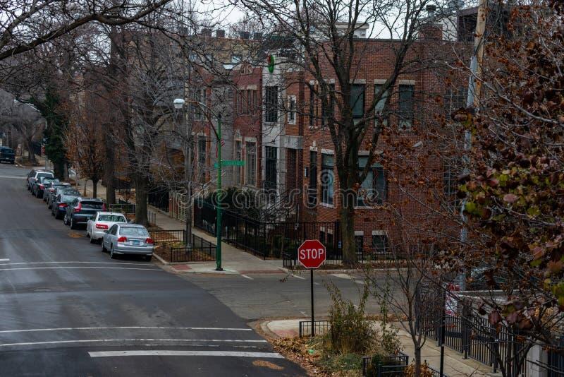 Den bostads- genomskärningen i gnäggande parkerar Chicago under vinter royaltyfri foto