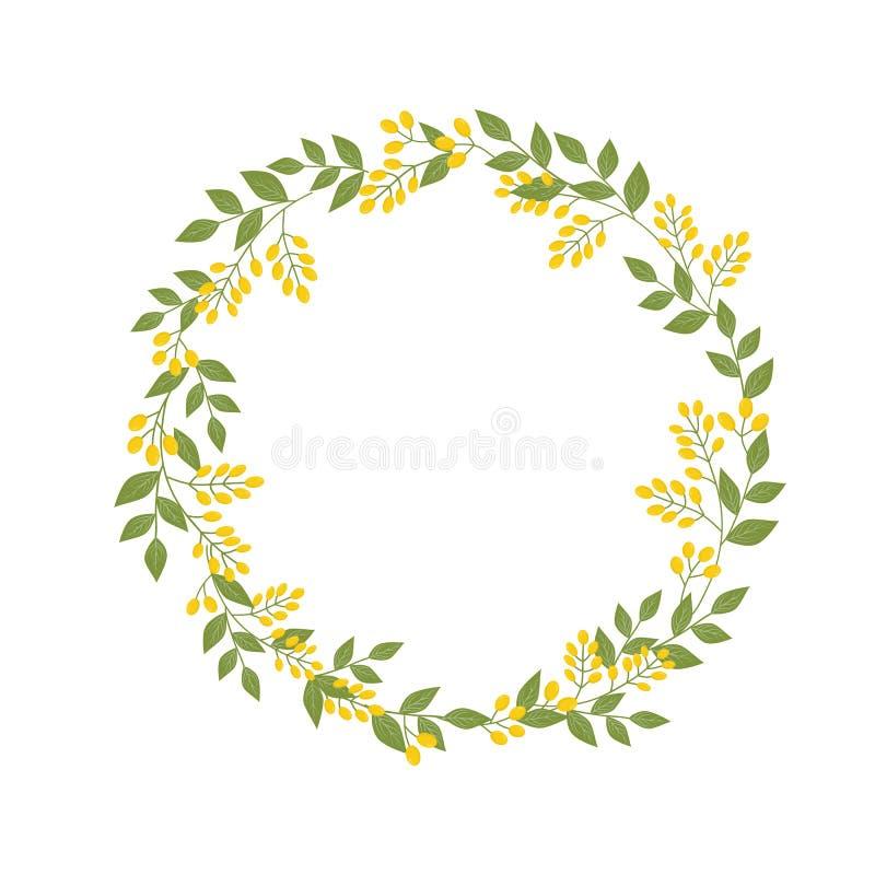 Den botaniska blom- kransen med ris av gula sandthornbär gör grön sidor på vit Mallåtlöje upp för textbokstäver vektor stock illustrationer