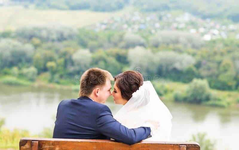 Den bröllopbruden och brudgummen på en bänk med naturen landskap landskapbakgrund arkivbilder