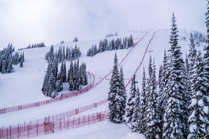 Den branta hastighetsskidåkninglutningen på hastighetsutmaningen och FIS-hastighet Ski World Cup Race på solen når en höjdpunkt S royaltyfri foto