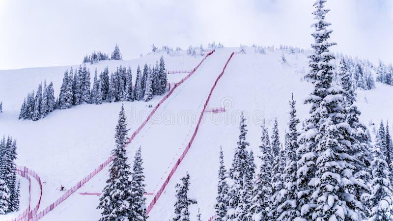 Den branta hastighetsskidåkninglutningen på hastighetsutmaningen och FIS-hastighet Ski World Cup Race på solen når en höjdpunkt S arkivbild