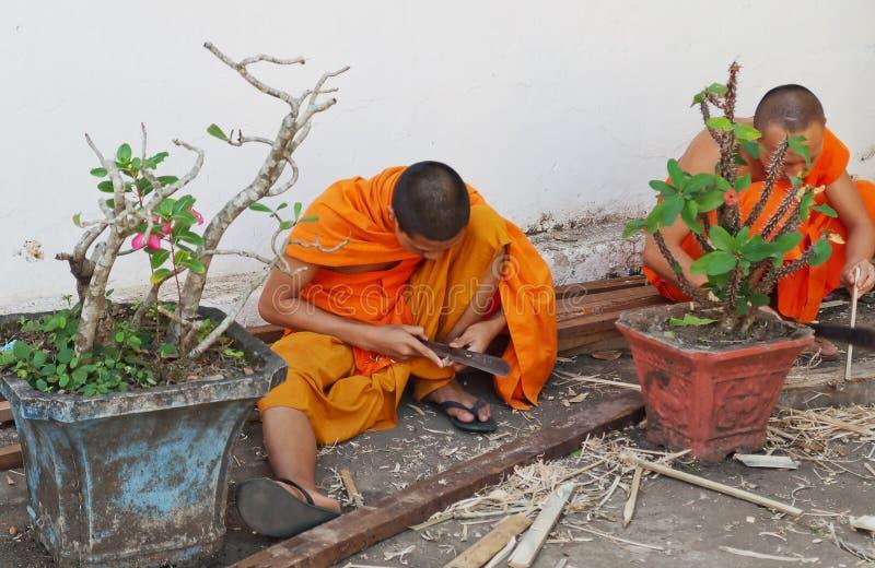 Den buddistiska monken fungerar med en baktala och ett trä. Luang Prabang. Laos. fotografering för bildbyråer