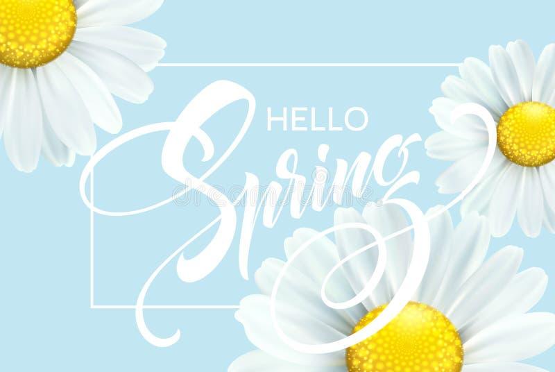 Den Calligraphic inskriften Hello fjädrar med vårblomman - blommande vit tusensköna också vektor för coreldrawillustration royaltyfri illustrationer