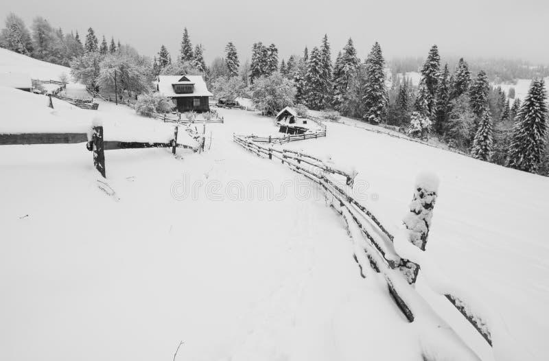Den Carpathian byn täckte med ny snö arkivfoto