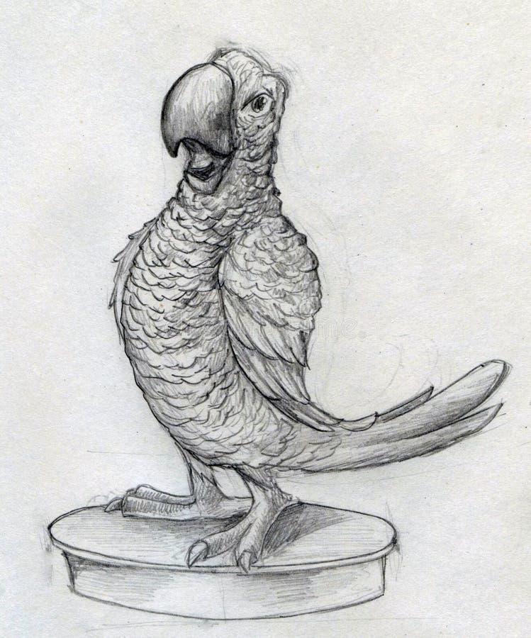 Den Cartoonish papegojan skissar royaltyfri illustrationer