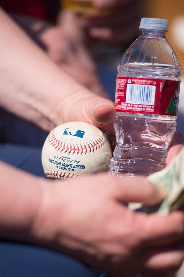 Den Chicago White Sox fanen fångade en illaluktande boll arkivbilder