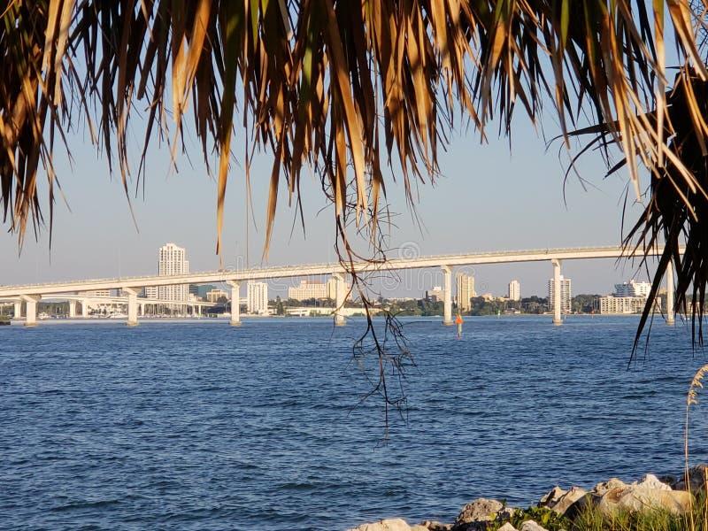 Den Clearwater stranden, röstade precis den 1 stranden i Amerika royaltyfri foto