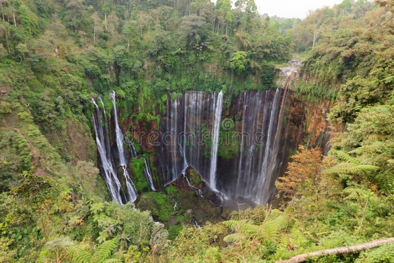 Den Coban Sewu vattenfallet, nära Malang, Java, Indonesien arkivfoton