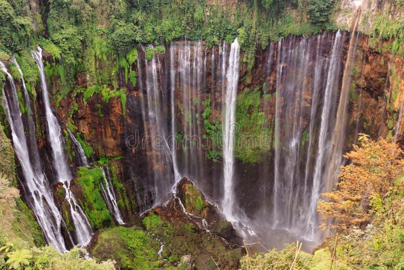 Den Coban Sewu vattenfallet, nära Malang, Java, Indonesien arkivfoto