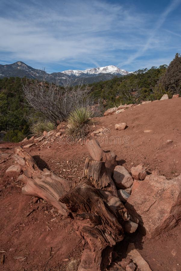 Den Colorado Springs tr?dg?rden av de steniga bergen f?r gudar ?ventyrar loppfotografi royaltyfria foton