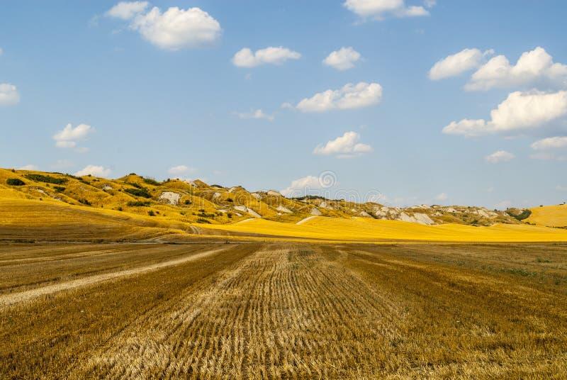 Den Crete senesien, kännetecken landskap i den Val d'Orciaen royaltyfri foto