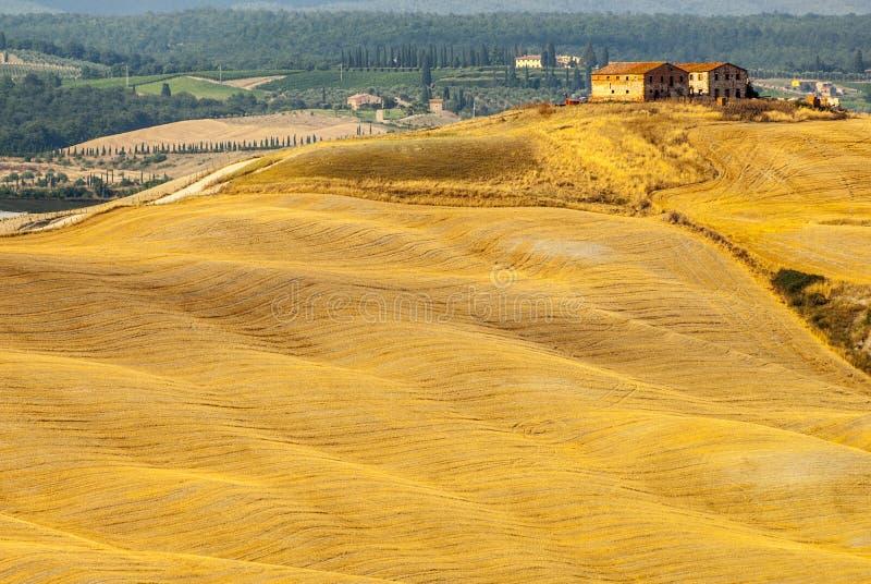 Den Crete senesien, kännetecken landskap i den Val d'Orciaen royaltyfria foton