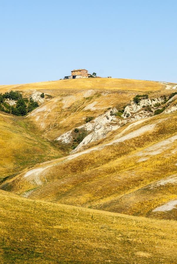 Den Crete senesien, kännetecken landskap i den Val d'Orciaen arkivbilder