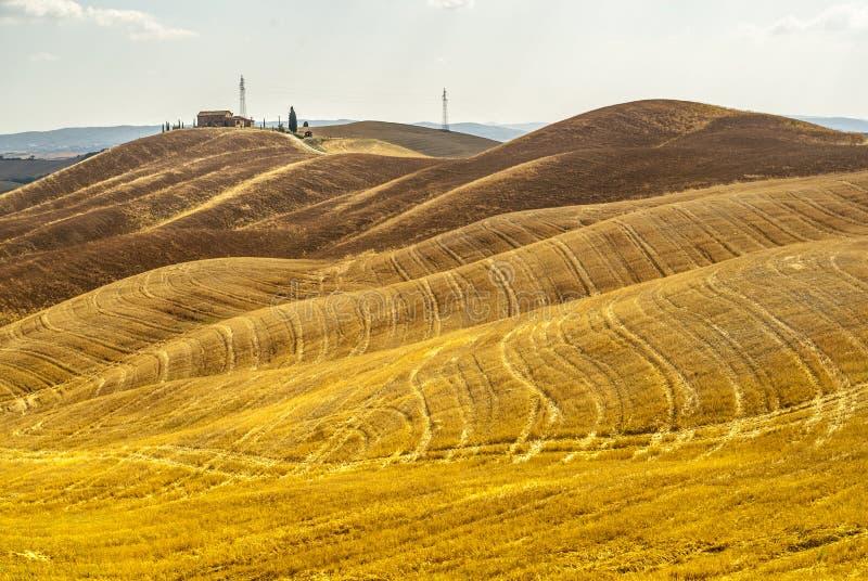 Den Crete senesien, kännetecken landskap i den Val d'Orciaen arkivfoto