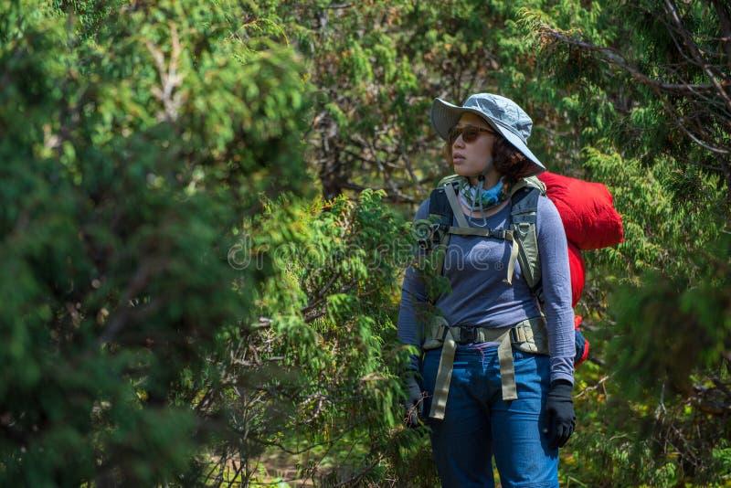 Den damfotvandraren eller trekkeren med ryggsäcken förlorade i djungel i Nepal arkivbild