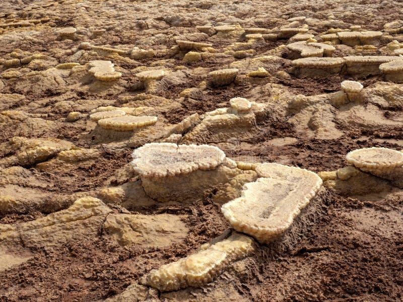 Den Danakil fördjupningen ser som ett landskap på en annan planet ethiopia royaltyfri foto