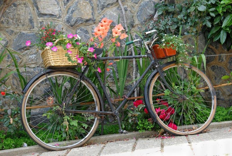 den dekorerade cykeln blommar gammalt royaltyfri foto