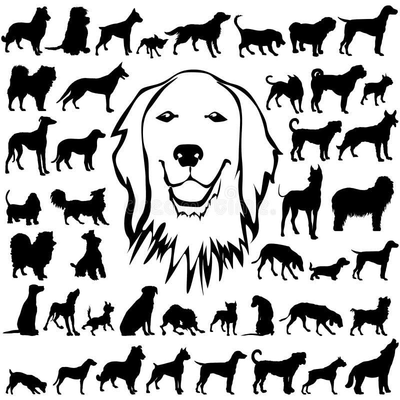 den detaljerade hunden silhouettes vectoral royaltyfri illustrationer
