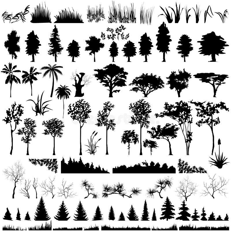 den detaljerade växten silhouettes den vectoral treen royaltyfri illustrationer