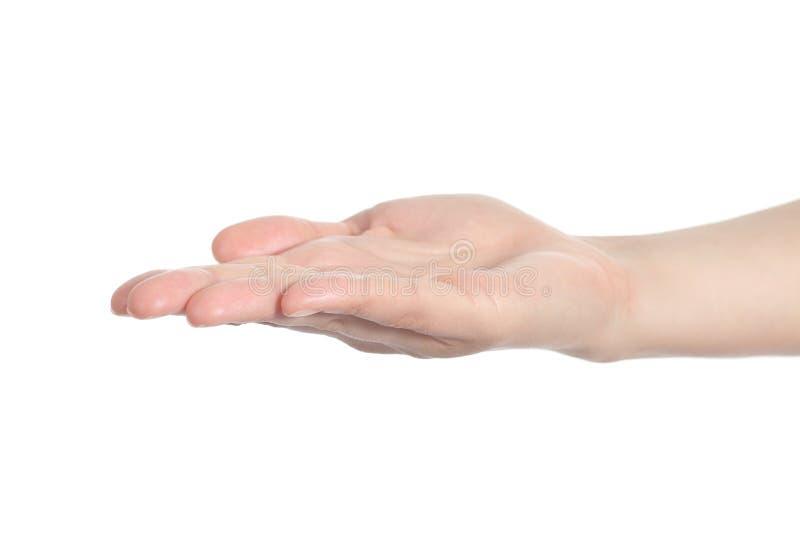 Den diagonala sikten av en kvinnahand med gömma i handflatan upp fotografering för bildbyråer