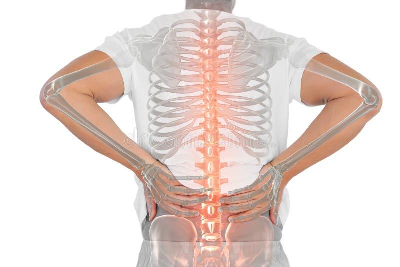 Den Digital komposit av Highlighted ryggen av mannen med tillbaka smärtar royaltyfria foton
