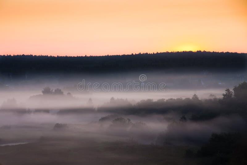 Den dimmiga dalen täckte med dimma under den rosa dimmiga landscen för sky/A arkivfoto