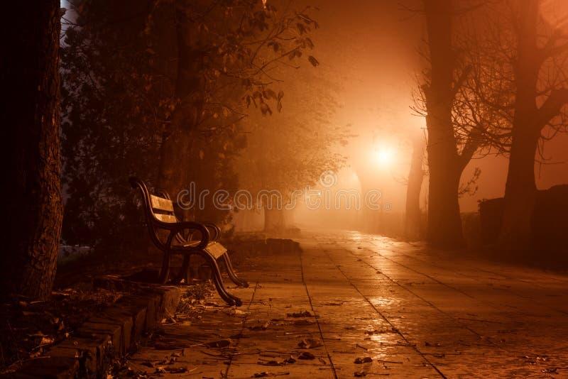 Den dimmiga gränden i nattstad parkerar, det dimmiga landskapet med brinnande lyktor, träd och bänkar fotografering för bildbyråer