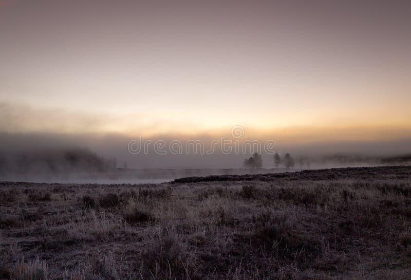 Den dimmiga morgonen på Yellowstone parkerar royaltyfri bild