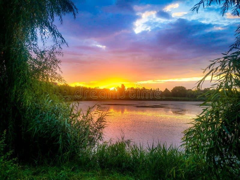 Den dröm- fantasilandskapsikten av den danube deltan och blått färgade dramatisk himmel på solnedgången royaltyfria bilder