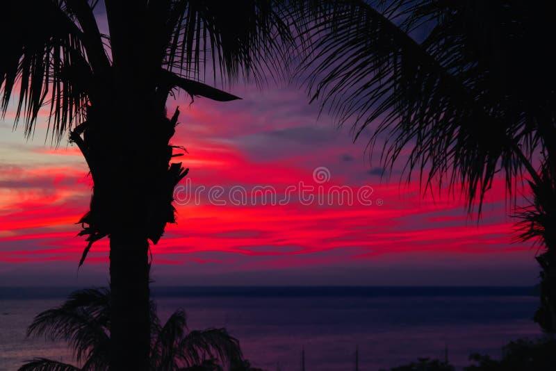 Den dramatiska solnedgången över mörkt vatten och konturer gömma i handflatan Seascape med moln i saftig röd strålsolnedgång Magi arkivfoto