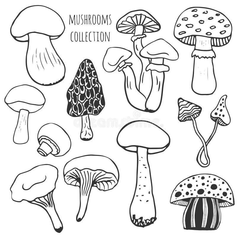 Den drog handen plocka svamp samlingen Klottervektoruppsättningen med ätligt och gift plocka svamp stock illustrationer