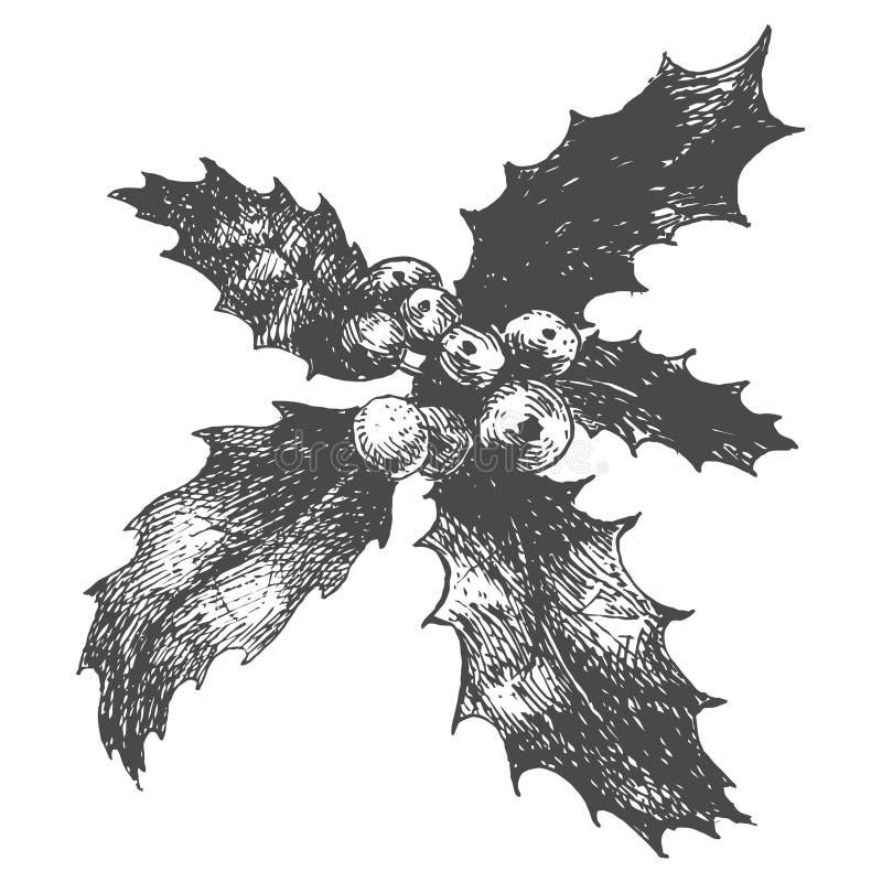 Den drog handen skissar av järnekväxten Vektorlinje konstillustration stock illustrationer