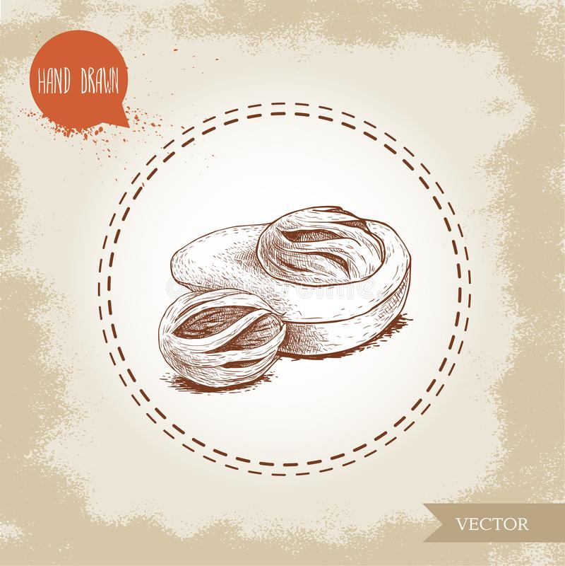 Den drog handen skissar för muskotnötmuskotblomma för stil ny sammansättning för frukter Krydda- och smaktillsatsvektorillustrati stock illustrationer