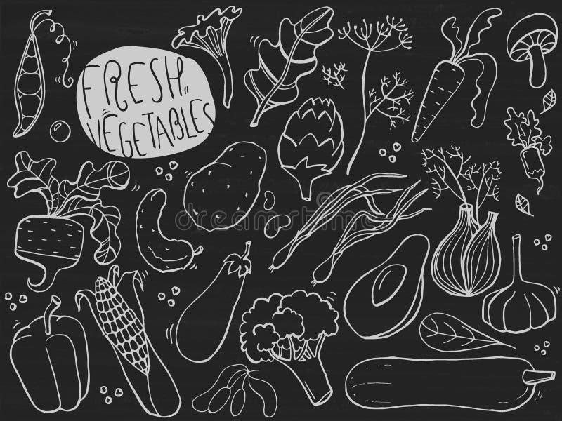 Den drog handen skissar för nya grönsaker Illustration på den svart tavlan royaltyfri illustrationer
