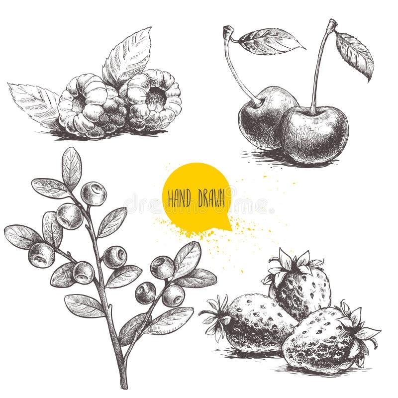 Den drog handen skissar stilbäruppsättningen på vit bakgrund Hallon med blad-, jordgubbe-, körsbär- och blåbärbranc royaltyfri illustrationer