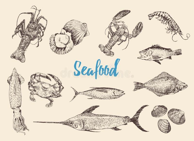 Den drog handen skissar uppsättningen av skaldjur royaltyfri illustrationer