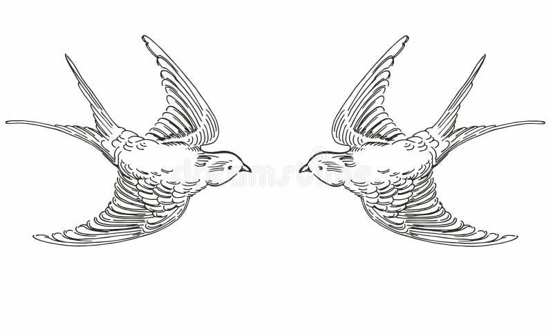 Den drog illustrationen av handen skissar flygkonturfåglar Svartvita original- realistiska svalor stock illustrationer