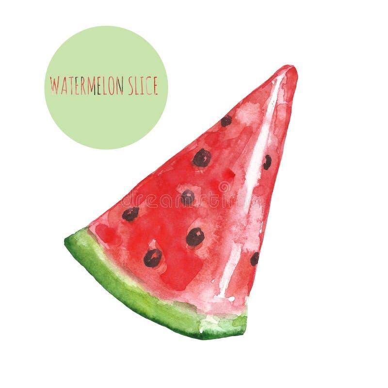 Den drog vattenfärghanden skivar av den mogna saftiga vattenmelon, isolerat på vit bakgrund Exotisk målning för tropisk frukt arkivfoto