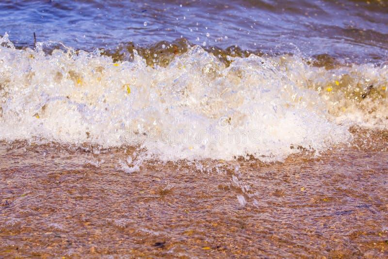 Den dynamiska vågen brister på kusten arkivbild