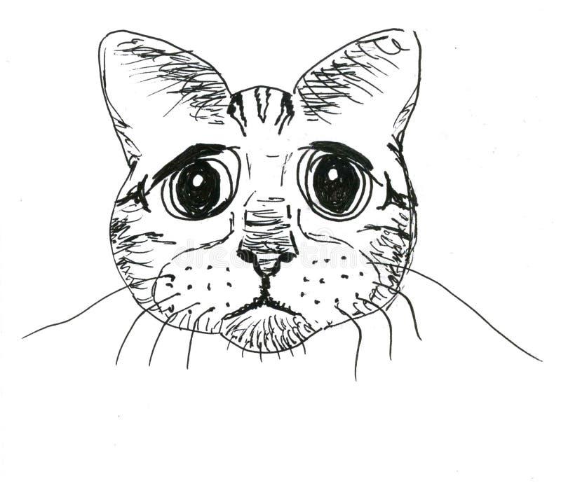 Den eftertänksamma katten tystar ned på vit bakgrund, grafik fotografering för bildbyråer