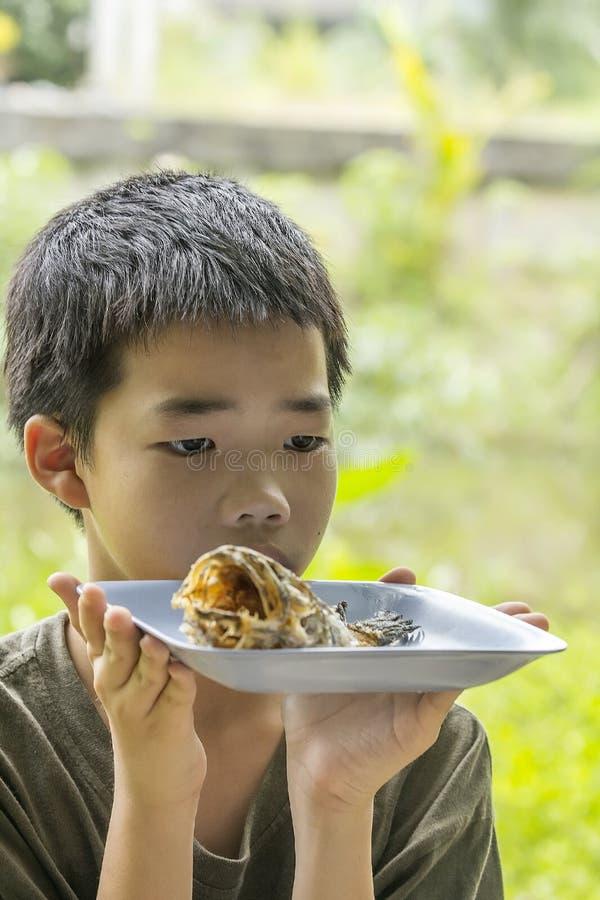 Den eftertänksamma pojken ser fiskbenet som klart ätas på plattan arkivfoton