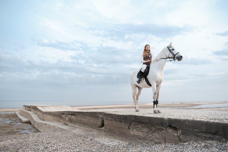 Den eleganta och härliga säkra unga kvinnan som bär den stilfulla jockeydräkten, rymmer tömmar och rider en vit häst arkivfoto