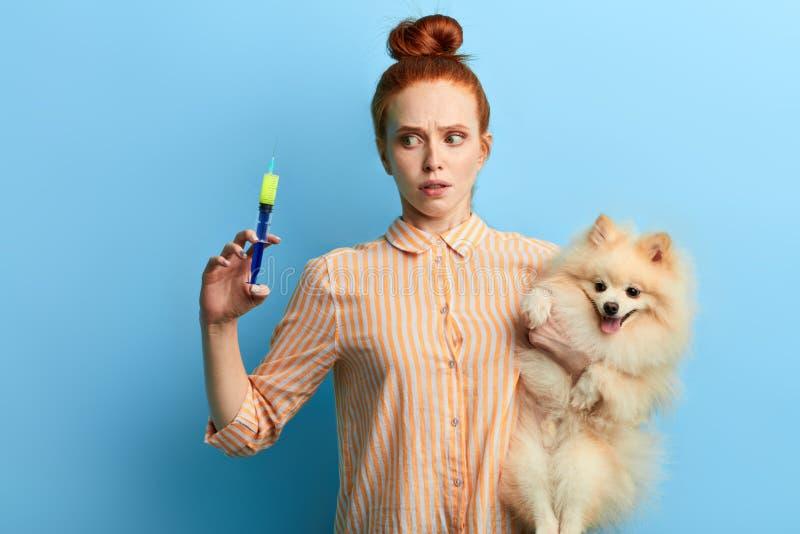 Den emotionella roliga flickan är rädd av att ge injektionen till hennes husdjur royaltyfri foto