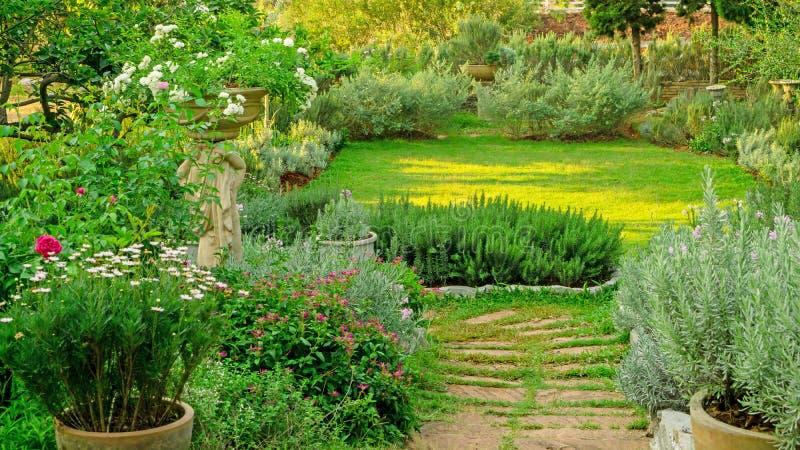 Den engelska stugaträdgården på gräsmattaträdgård för grönt gräs, det infomal landskapet dekorerar med rosor, rosmarinö arkivbild
