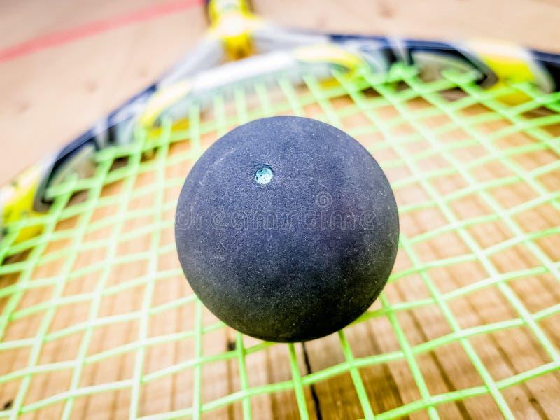 Den enkla pricksquashbollen på racket sticker fotografering för bildbyråer