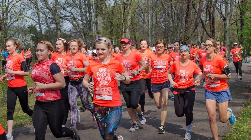 Den enorma gruppen av kvinnor i orange t-skjortor med nummer k?r maraton i parkerar i v?r Wroclaw Polen - April 7, 2019 royaltyfria foton
