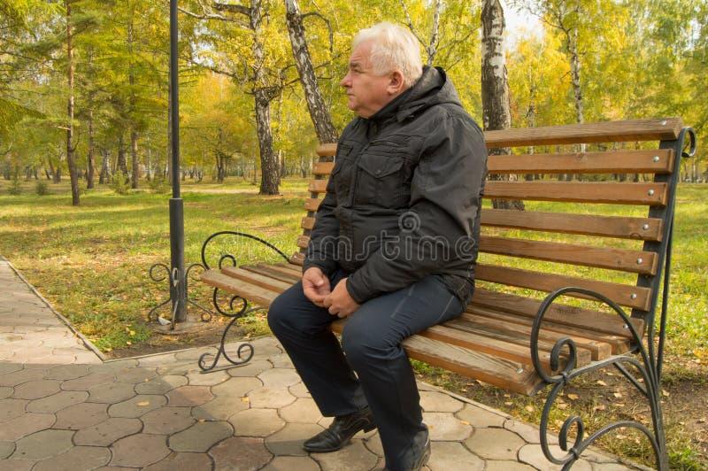 Den ensamma gråhåriga gamala mannen som vilar på en träbänk i en parkera på en solig höstdag arkivbilder